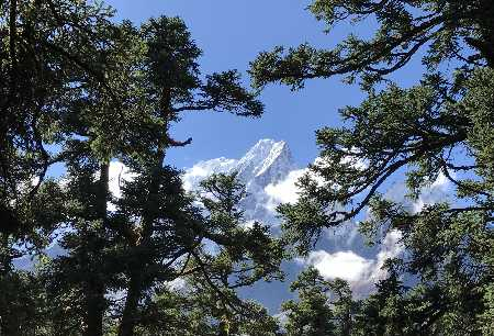 montagne Bolivie