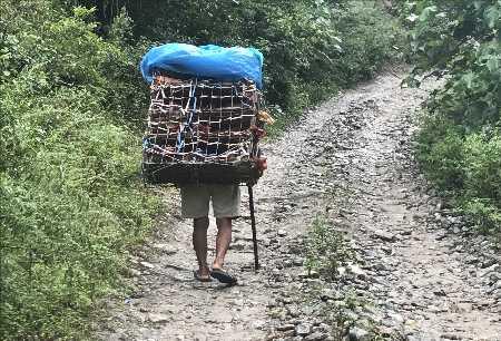 Un népalais transportant ses poules